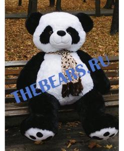 180 панда